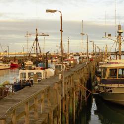 Bluff Fisherman's Wharf